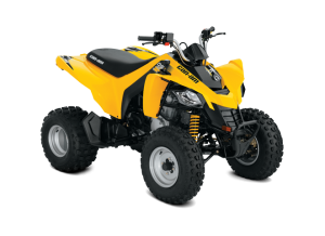 Can-Am DS250 -