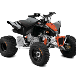 Can-Am DS90X -