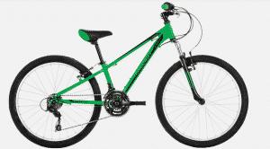 "Raleigh ELIMINATOR 24"" Kids Bike -"