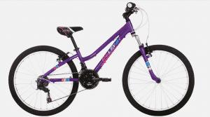 """Raleigh FREEDOM 24"""" Kids Bike -"""
