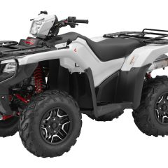 2016 Honda FourTrax Foreman Rubicon 4x4 AT DCT EPS Deluxe