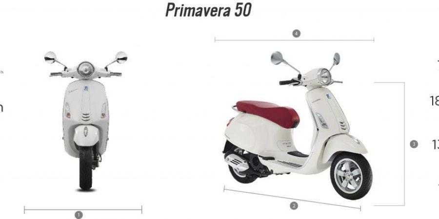 PRIMAVERA 50