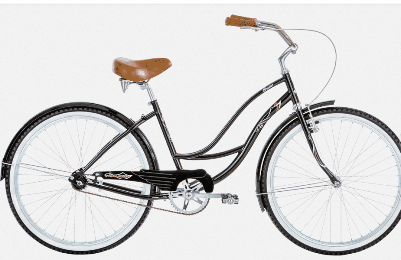 raleigh special low step